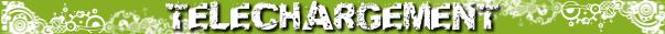 http://sd-2.archive-host.com/membres/images/10677301153014280/icone_blog/telechargement_fiche_oav.png