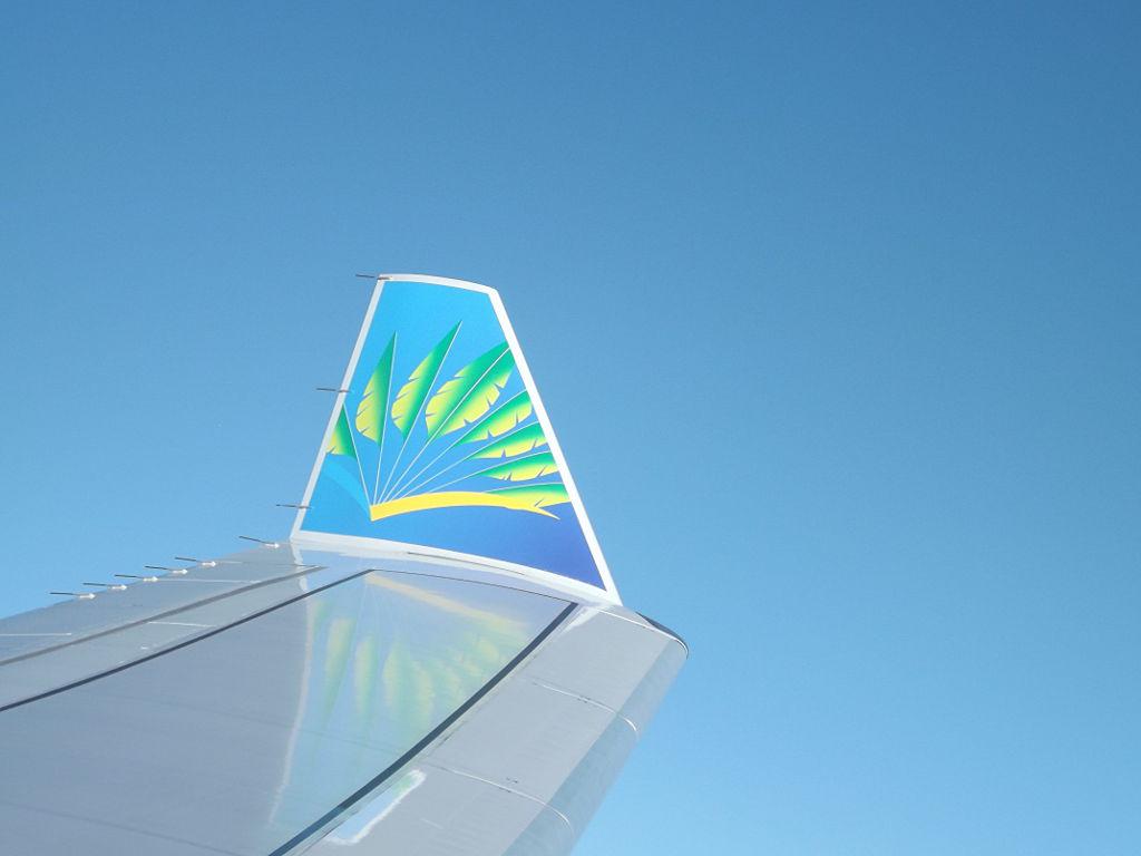 photo winglet