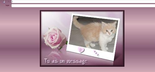 message rose
