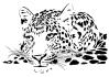 http://sd-2.archive-host.com/membres/images/miniatures/187503401247784810/Animaux/Animaux_de_la_Savane/tete_de_leopard.png
