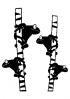 http://sd-2.archive-host.com/membres/images/miniatures/187503401247784810/Animaux/La_grenouille/les_grenouilles.png