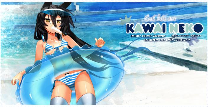 Kawai Neko Banniere_KN