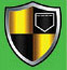 Velvel Rookies Championship Green_team