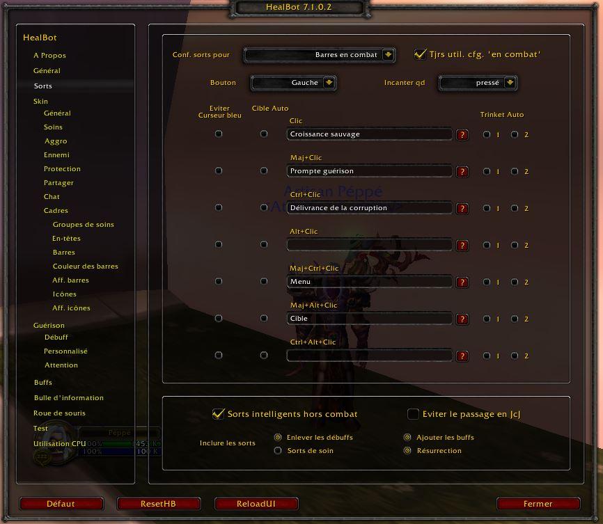 Addon Healbot Reglage_sort