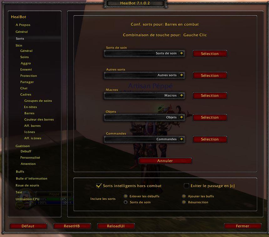 Addon Healbot Reglage_sort2