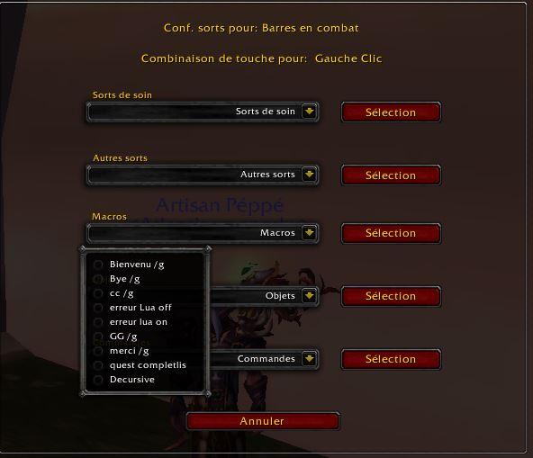 Addon Healbot Reglage_sort5