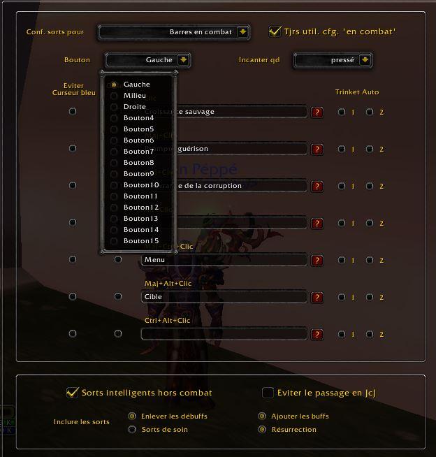 Addon Healbot Reglage_sort8