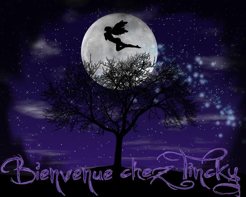 http://sd-2.archive-host.com/membres/images/96798098662506377/Ange_et_Lune.jpg